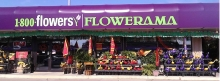 1-800-FLOWERS | Flowerama | Duff Ave. & Lincoln Way
