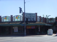 1-800-FLOWERS | Conroy\'s | Seventh & Bellflower